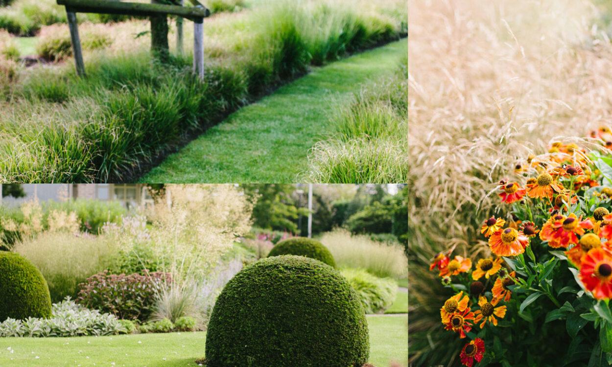 Kleurrijke borders en grassen 16